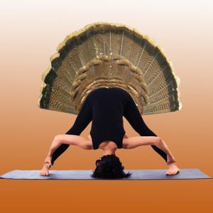 Thanksgiving Yoga: 108 Sun Salutations with Dee