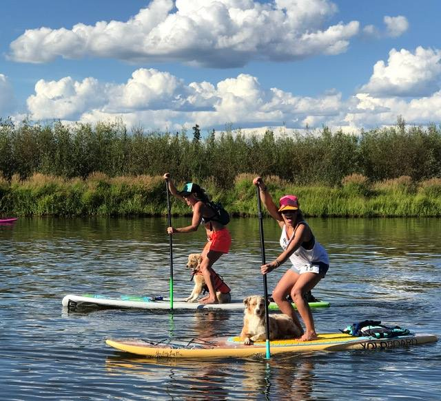 SUPdawg Chena River Paddle Board Race @ Graehl Park | Fairbanks | Alaska | United States