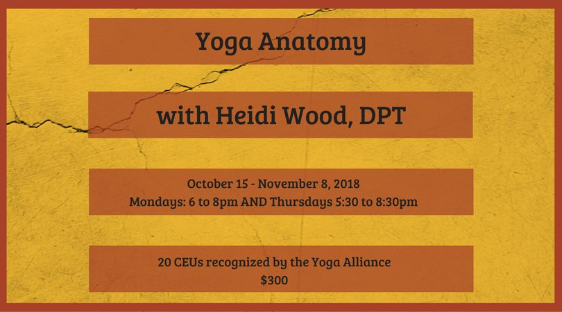 Yoga Anatomy for Continuing Education Units @ Trax Yoga | Fairbanks | Alaska | United States