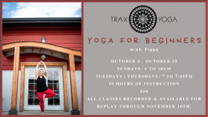 Online Yoga for Beginners @ Trax Yoga Virtual Studio
